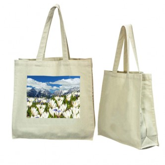 BG0203235 8oz Canvas Bag